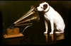 HMV in administration, 4,500 jobs at risk, all vouchers nullified