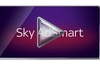 Sky AdSmart targets ads at a variety of TV audience segments