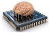 Organic computing device created using four rat brains