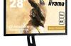 Day 13: Win an iiyama G-Master 4K monitor