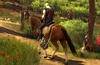 The Witcher 3: Blood and Wine launch trailer lands on YouTube