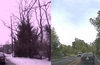 Nvidia AI can change video scenes from winter to summer
