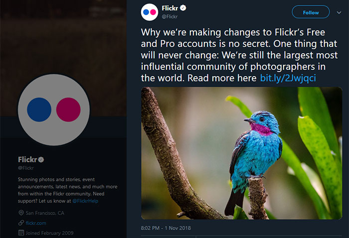 Flickr transmogrifies 1TB free user data limit into 1,000 file limit