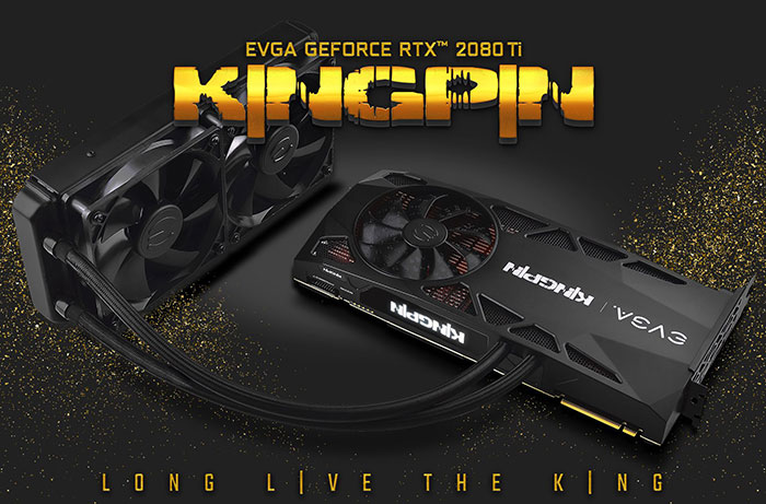 EVGA GeForce RTX 2080 Ti KingPin Gaming detailed - Graphics