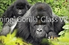 Corning Gorilla Glass Victus majors on scratch resistance