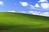 Microsoft Windows XP source code leaked online