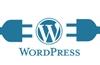 SEOPress WordPress plugin flaw left 100k sites wide open
